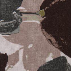 passat-2-grey-brown