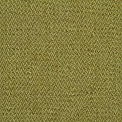 madison-6-kiwi