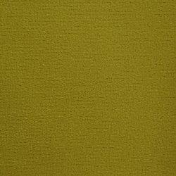 7 kiwi