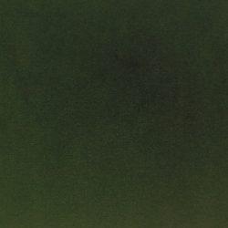palermo 9 green